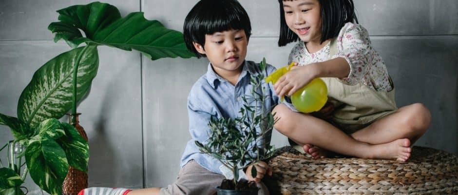 kids spray on plant