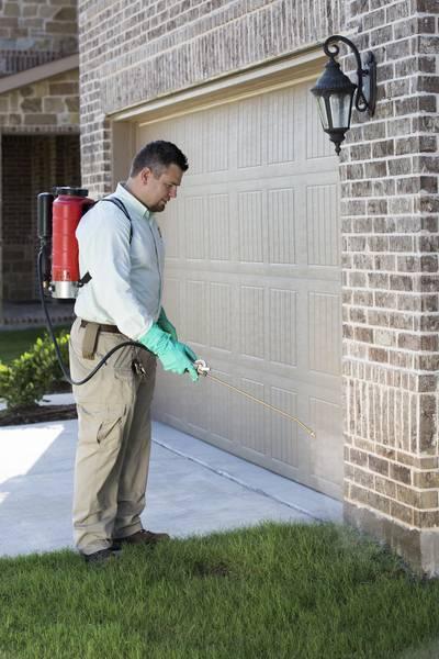Preventative Pest Control Dallas TX