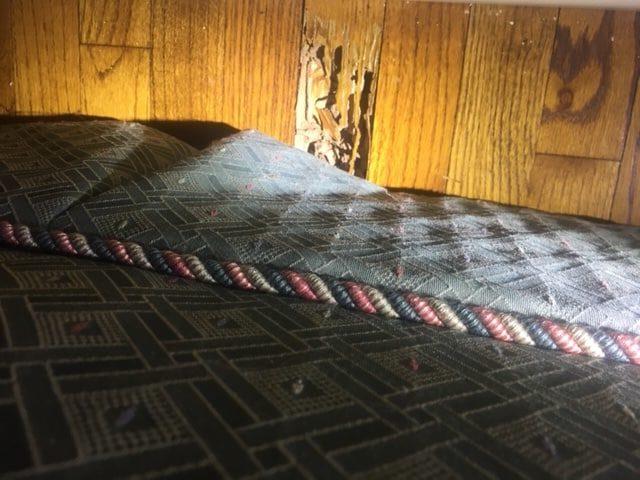 Termite Damage Wood Floors